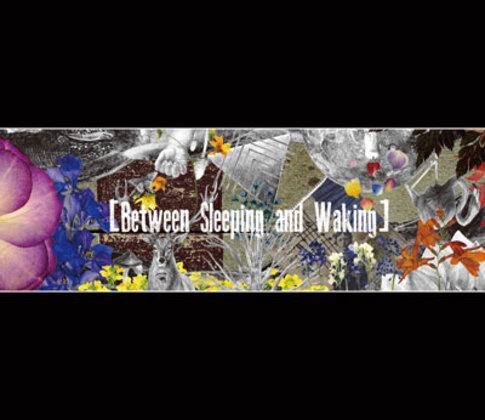 Between Sleeping and Waking