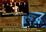 AGGRESSIVE DOGS / EDGE OF SPIRIT