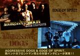 AGGRESSIVE DOGS / EDGE OF SPIRIT