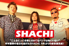 SHACHI