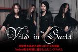 Veiled in Scarlet