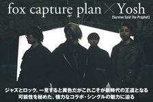 fox capture plan × Yosh (Survive Said The Prophet)