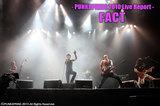 FACT | PUNKSPRING 2010