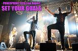 SET YOUR GOALS | PUNKSPRING 2010
