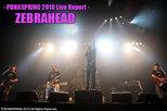 ZEBRAHEAD|PUNKSPRING 2010