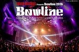 Bowline 2016