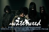 FACTも所属するmaximum10より大阪ポスト・ハードコア・バンド、waterweedデビュー!記念すべき1stフル・アルバムについて語ったインタビュー&動画メッセージを公開!