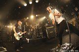 BUZZ THE BEARS、3/5に堺club massiveにて裏ツアー・ファイナル開催決定!地元 愛媛で自主企画イベントの開催も発表!