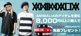 ANIMALIAラバーバンド・キャンペーン明日迄!ANIMALIAを含む\8,000以上ご購入でラバーバンドプレゼント中!
