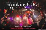 The Winking Owlのライヴ・レポート公開!SpecialThanks、BAND PASSPO☆を迎えた主催イベント東京公演、よりタフになった演奏を見せつけた一夜をレポート!