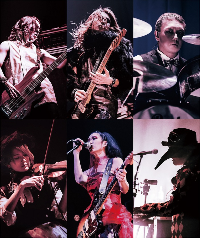 DECAYS、初のライヴDVD『DECAYS LIVE TOUR 2016-2017 Baby who wanders Live at Akasaka BLITZ』リリース決定!
