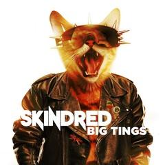 skindred_bigtings.jpg
