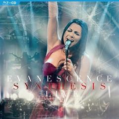 Evanescence_bd.jpg