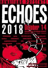 """10/14開催のHAWAIIAN6主催イベント""""ECHOES 2018""""、第1弾出演者にdustbox、G4N、SABANNAMAN、ENDZWECK、BEYOND HATEら決定!"""