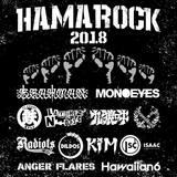 """BRAHMAN、MONOEYES、HAWAIIAN6ら出演!""""HAMAROCK 2018""""、11/4に浜松 窓枠にて開催決定!"""