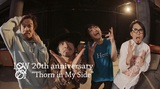 10-FEET、BRAHMAN、細美武士、ジーフリら出演!LOW IQ 01、明日4/24リリースのアルバムより「Thorn In My Side」MV公開!20周年記念イベント開催も!