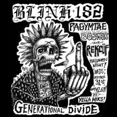 blink_generational_divide.jpg