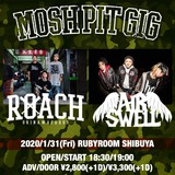 "ROACH、1/31主催イベント""MOSH PIT GIG""でAIR SWELLとのツーマン開催!地元沖縄ワンマンより「THE TIME IS NOW」ライヴ映像公開!"