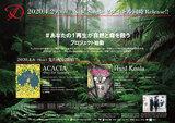 D、ニュー・シングル2タイトル同時発売&結成記念日4/6に先行配信決定!オーストラリア森林火災へ向けたチャリティ・ソング、ASAGI(Vo)が日本初となるDL&サブスク楽曲収益のWWFジャパンへの自動的な寄付を考案!