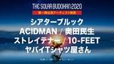 """""""THE SOLAR BUDOKAN 2020""""オンライン・フェス、第1弾アーティストで10-FEETら6組の出演発表!"""