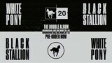 DEFTONES、名盤『White Pony』20周年記念盤&リミックス・アルバム『Black Stallion』リリース決定!Mike Shinoda(LINKIN PARK)、Robert Smith(THE CURE)、SQUAREPUSHERら参加!