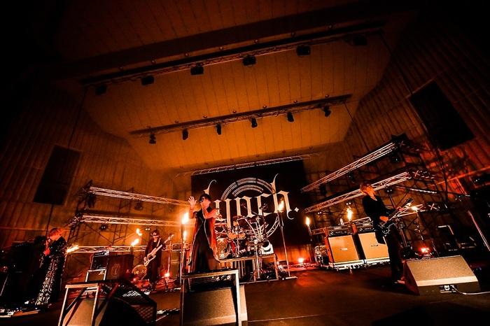 lynch_live2.jpeg