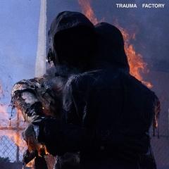 nothingnowhere_trauma_factory.jpg