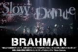 BRAHMANのインタビュー&動画メッセージ含む特設ページ公開!映像と楽曲の両軸で現在のバンドの姿を見せるコンセプチュアルなシングル『Slow Dance』を明日9/22リリース!
