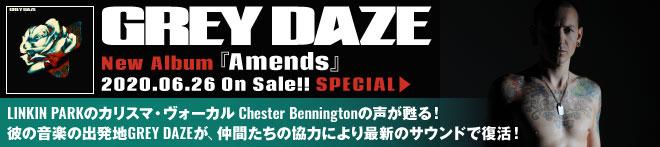 GREY DAZE『Amends』特集!!